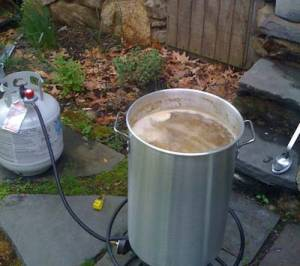 Boiling the wort